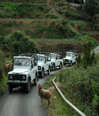 Jeep Safari Teide Masca 4x4