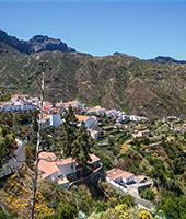 Paisajes canarios: Ingenio + Arucas + Firgas + Puerto de las Nieves