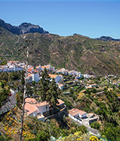 Canarian Landscapes Paisajes canarios: Ingenio + Arucas + Firgas + Puerto de las Nieves