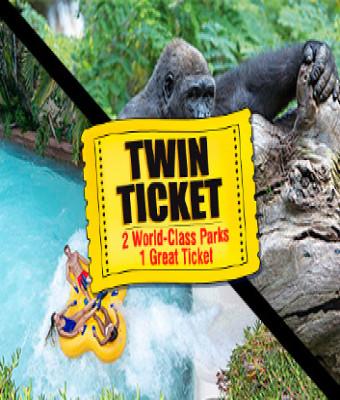 Twin ticket entrada