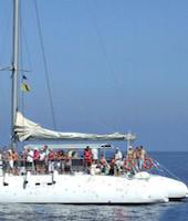 Catamaran con avistamiento de ballenas y delfines