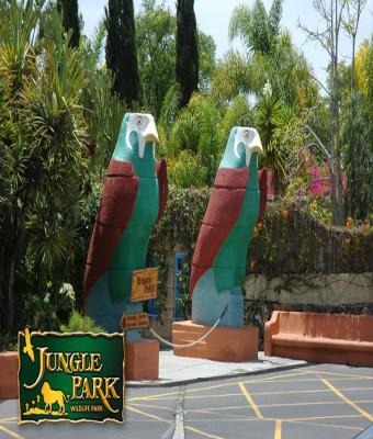 Jungle Park con bus