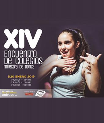 XIV Encuentro de Colegios - Muestra de Danza