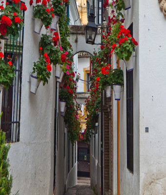 7 Days-6 Nights: Andalusia, Mediterranean Coast and Barcelona