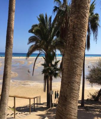 Discover the South - Fuerteventura