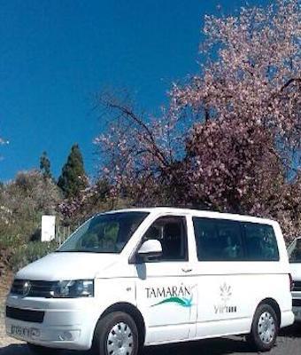 VIP Tour Masca y Teide