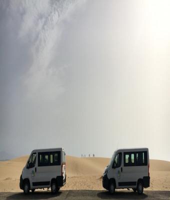 Tour Wildcofete - Fuerteventura