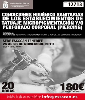 12713 - Condiciones Higiénico Sanitarias de los Establecimientos de Tatuaje, Micropigmentación y Perforado corporal (Piercing)