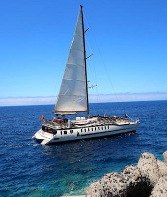 Viaje en barco Supercat con avistamiento de delfines