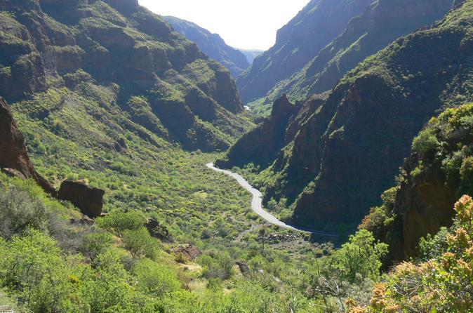 excursi-n-de-senderismo-en-el-ca-n-de-guayadeque-en-gran-canaria-in-las-palmas-de-gran-296240