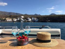 Tenerife Sailing Charter (11)