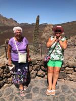Tajinastes del Teide