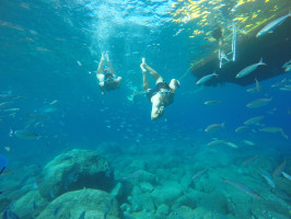 1.Snorkeling