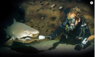 Palma Aquarium (1)