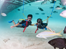 Super Snorkel