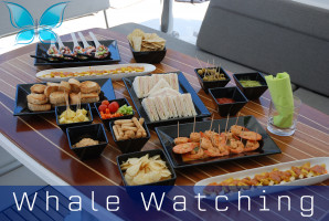Whalewatching7