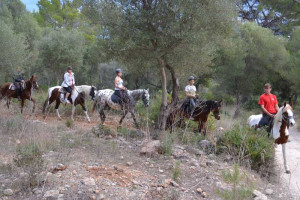 Ses Roques Paseo a caballo 2