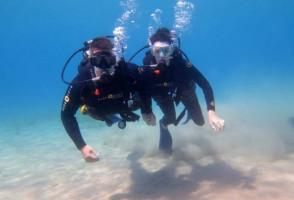 Diving6-600x408