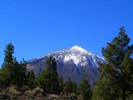 Excursión por las Cañadas del Teide