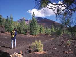 Hiking on Tenerife